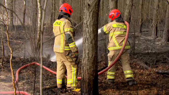 Ponad sześć tysięcy kwietniowych pożarów traw. <br />W jednym z nich zginęła kobieta