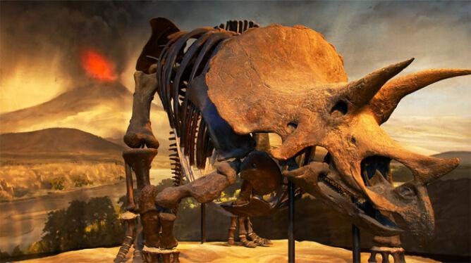To nie asteroida zabiła dinozaury? Naukowcy: przyczyną mogły być wulkany